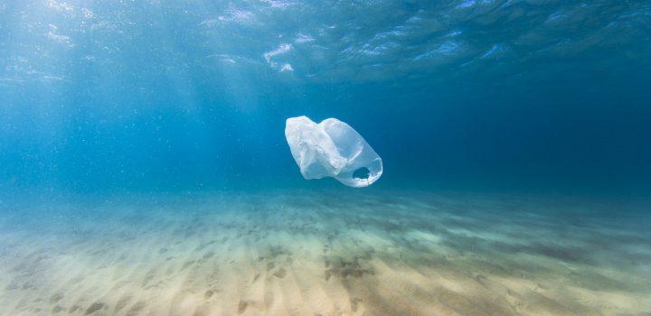 Existen realmente los productos ecológicos?